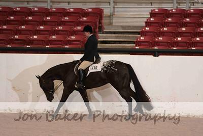 Day 3 - Hunter Under Saddle