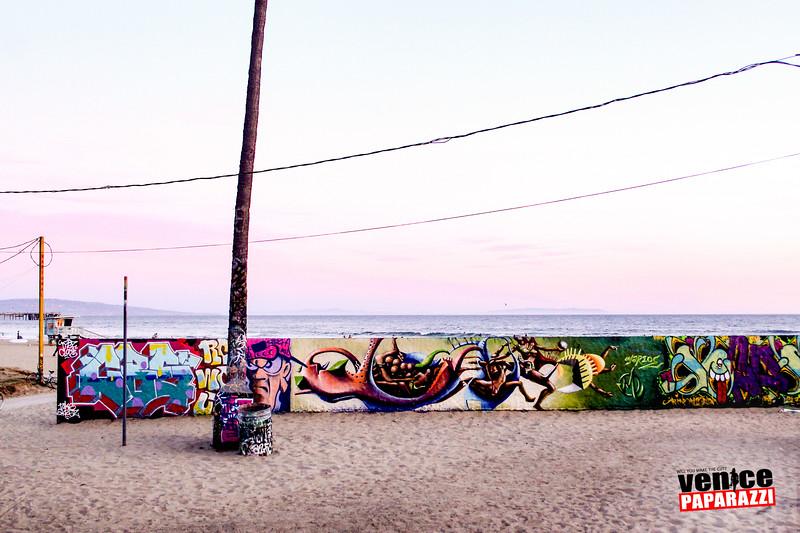 Venice Beach Fun-266.jpg