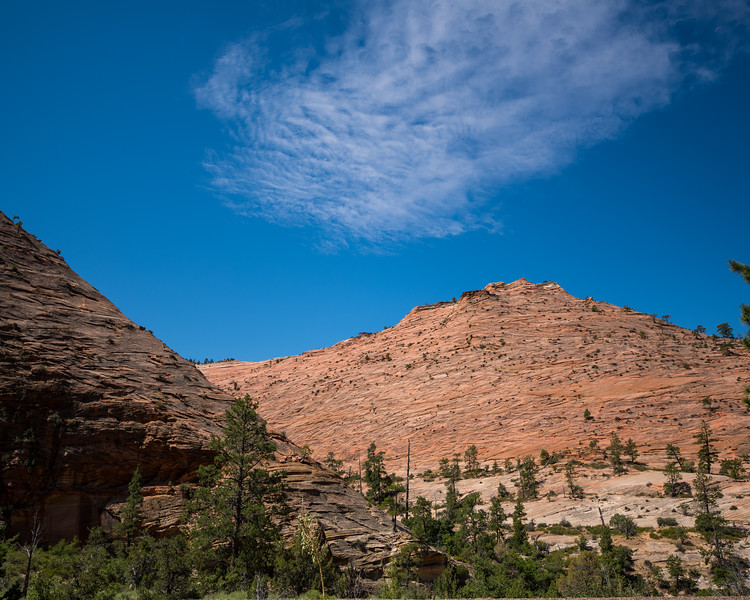 Zion Mt Carmel Highway_FullSize-23.jpg