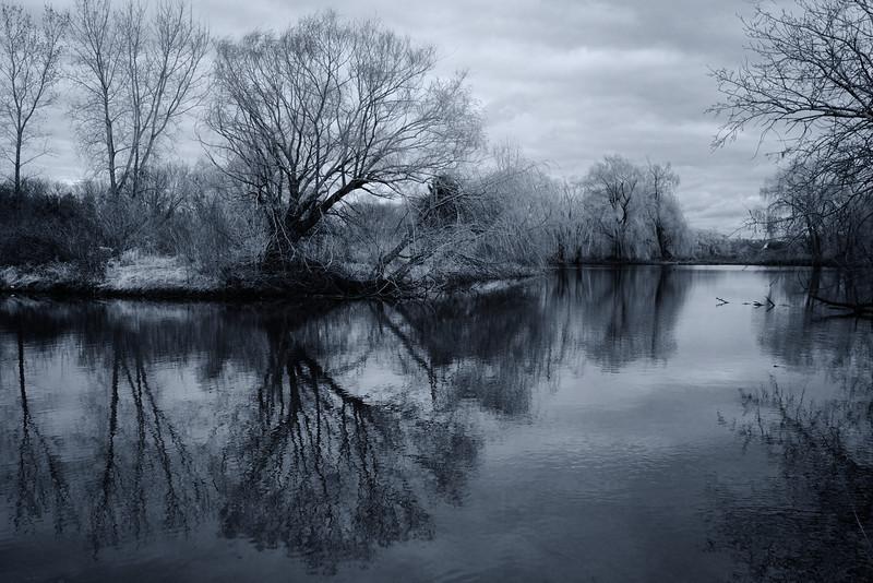 Blue Reflection.jpg