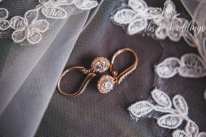 Central FL wedding photographer-0058.jpg