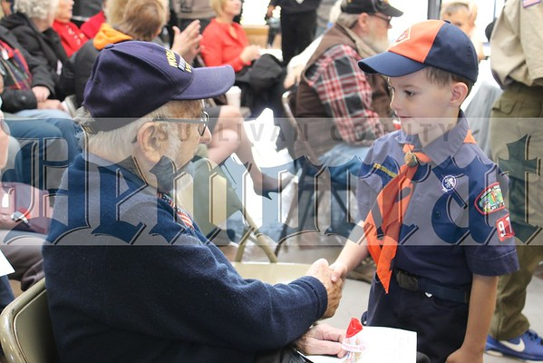 Monticello Veterans Day