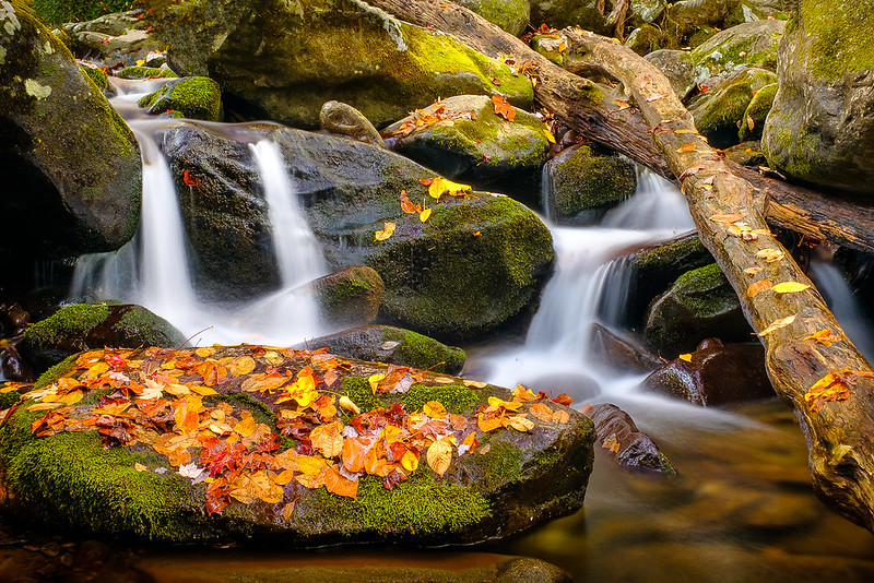 Cascading Creek in Autumn