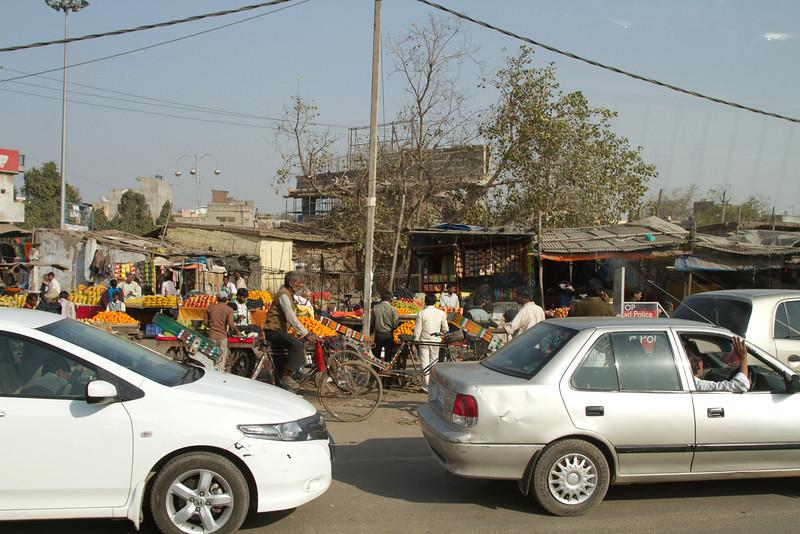 India_2012Feb-5510.jpg