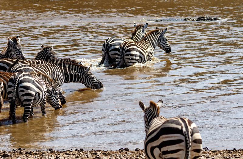 Kenya 2015-02552.jpg