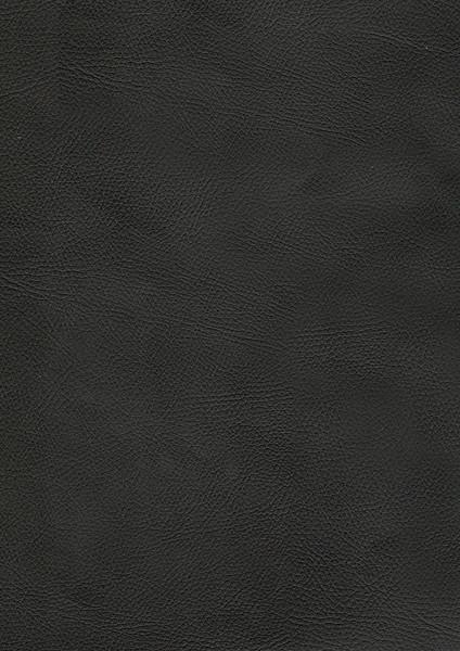 COD 316.jpg