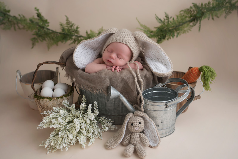 newborn-photographer-theme-2144.jpg