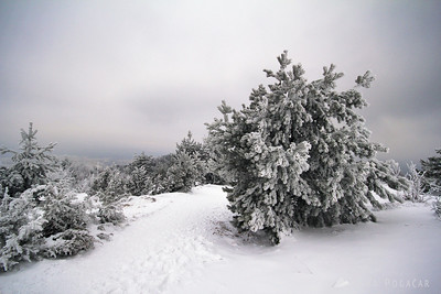 Slivnica in snow - Jan 29, 2011