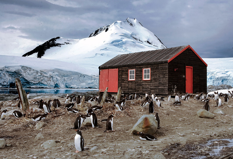 penguin post office.jpg