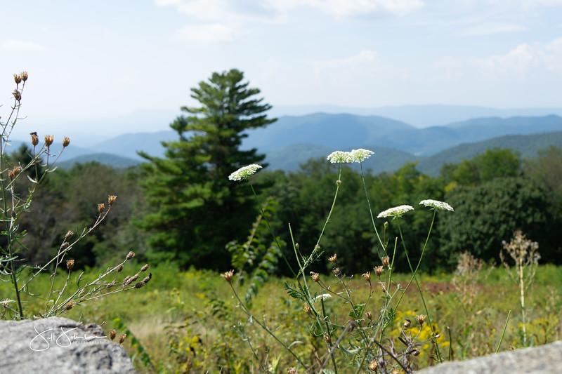 at hike-00302.jpg