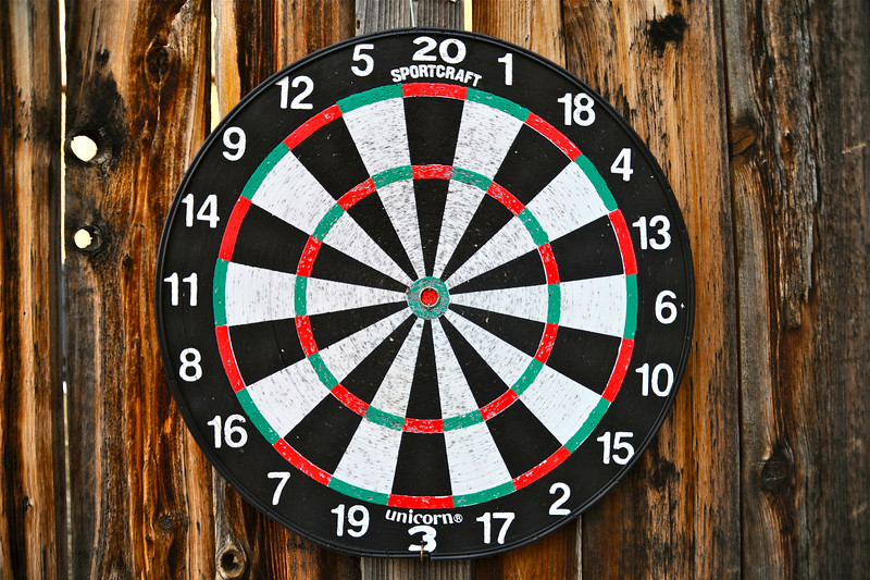 2011/3/5 – So this is truly a desperation shot.  It was a rainy Saturday and I was just too busy to think much about getting a photo. This dartboard is on the fence along our driveway. It doesn't get much use with it being winter and cold. it doesn't get much use period.