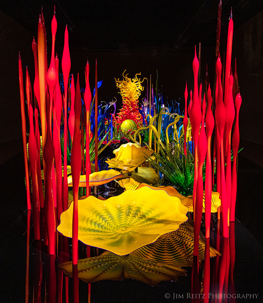 Chihuly Gallery & Glass at Seattle Center