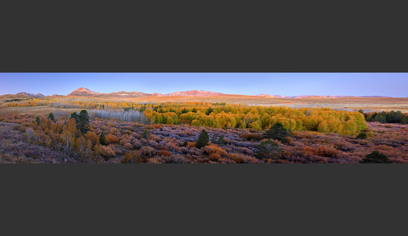 Conway_Summit_Fall_Color_Eastern_Sierra_Panoramic-.jpg