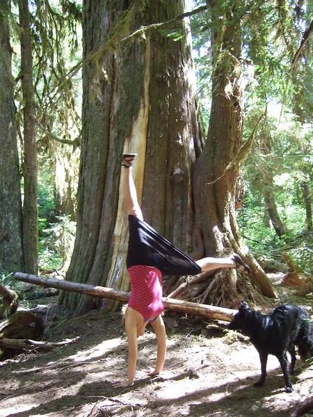 Tracy Mcfarlane - Cedar Flats, Oregon