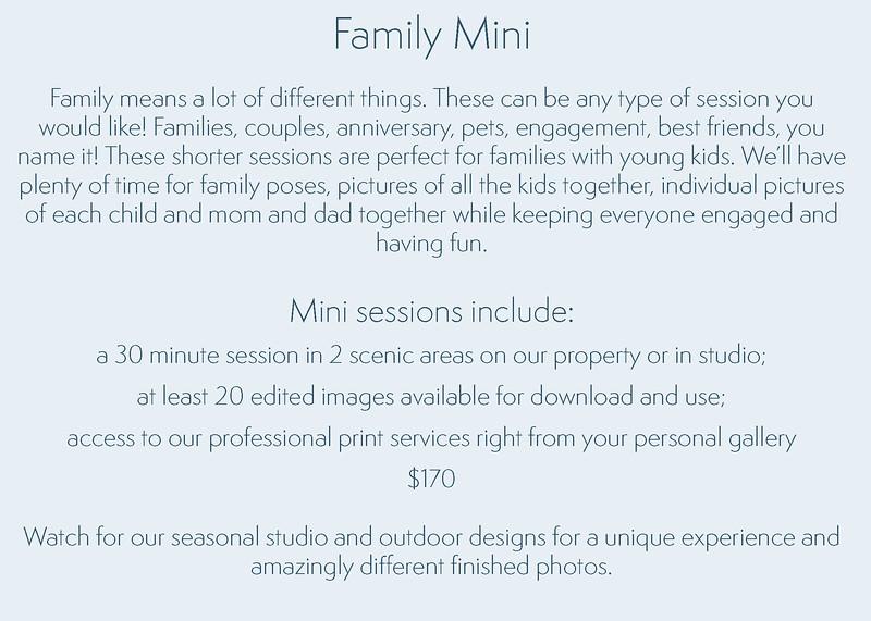 Family Mini Session Text.jpg