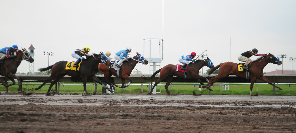 . Horses race down the near straighaway in the second race. (Pioneer Press: John Autey)