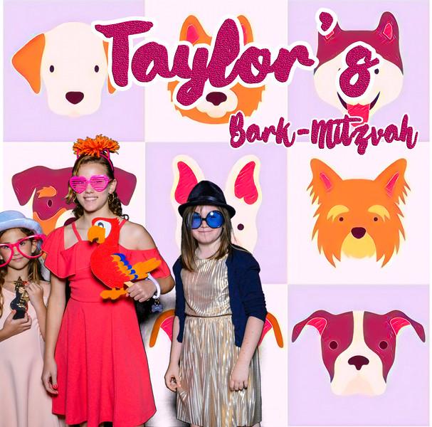 Taylors pawmitzvah-20762.jpg