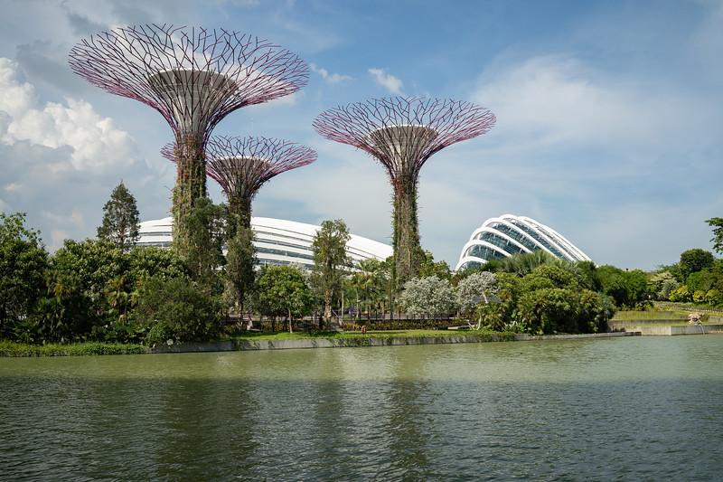 Singapore-19-081.jpg
