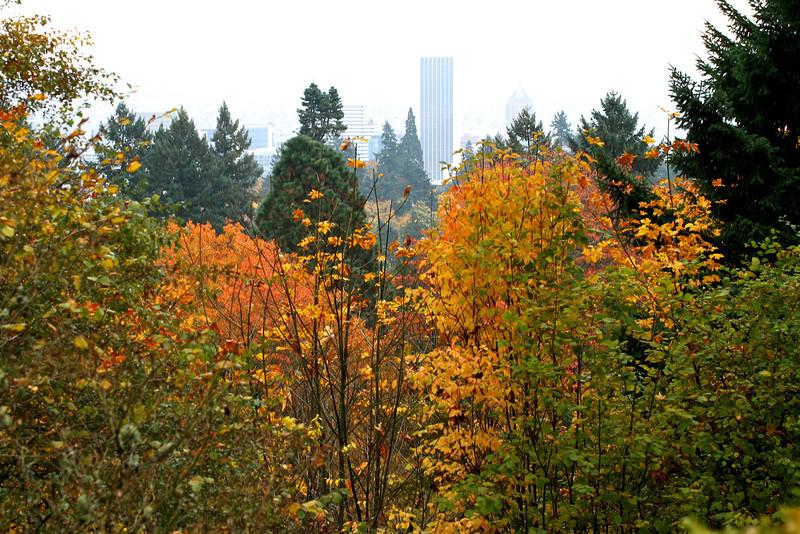 Portland Japanese Garden  11-11-11  3541.jpg