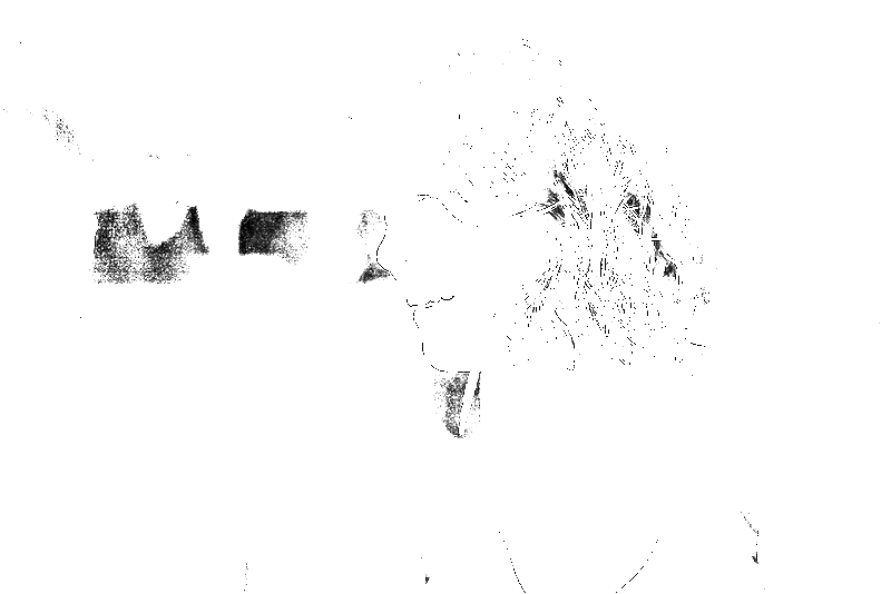 DSC09139.png