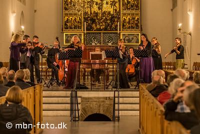 Aarhus Bach-Selskab 25/10 2015