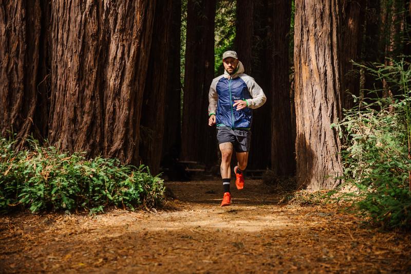 DT_redwoods_Jussioksanen_edited-2102.jpg