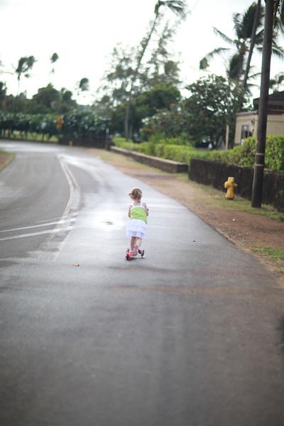 Kauai_D4_AM 043.jpg