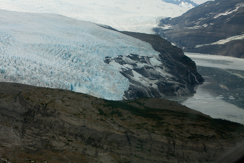 Alaska Icy Bay-3737.jpg