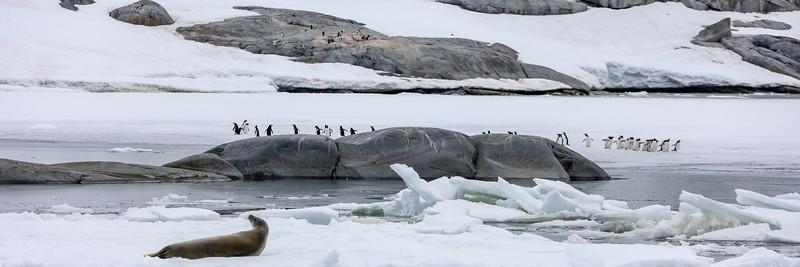 2019_01_Antarktis_04269.jpg