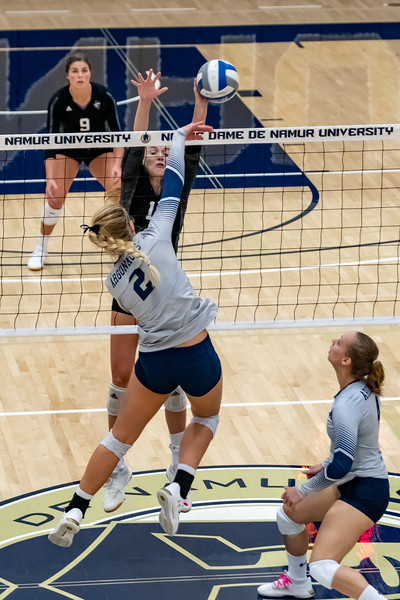 HPU vs NDNU Volleyball-72018.jpg