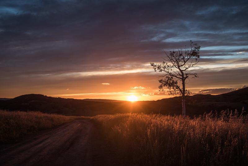 Rach's Sunset Shot on Last Dollar Road