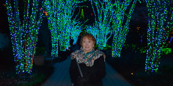 2017 12 31 Atlanta Christmas Lights