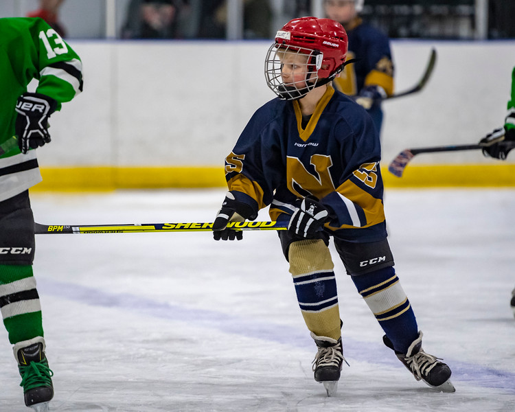 2019-02-03-Ryan-Naughton-Hockey-8.jpg