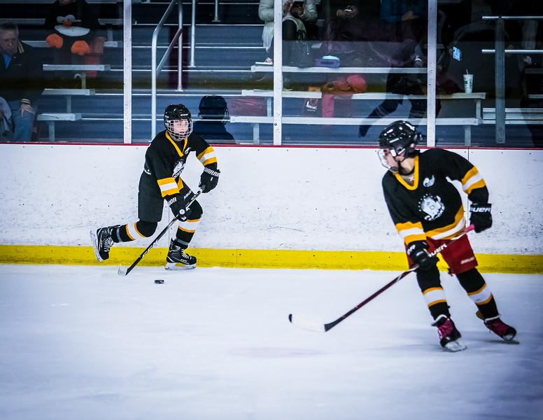Bruins2-337.jpg