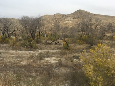 Soledad Canyon Road (County Fire Property)