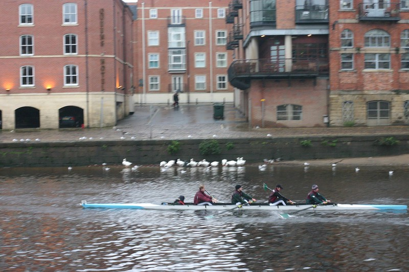 york-rowing_2046219279_o.jpg