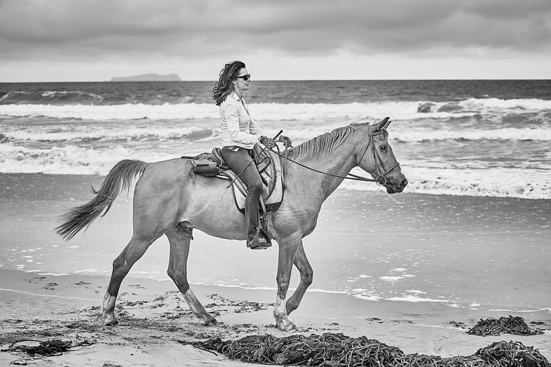 _DSC20680158@Catherine Aranda-LearnedOceanMeadowview©CAL..jpg