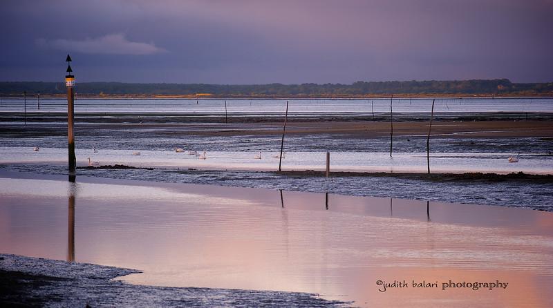 Bassin d' Arcachon, France