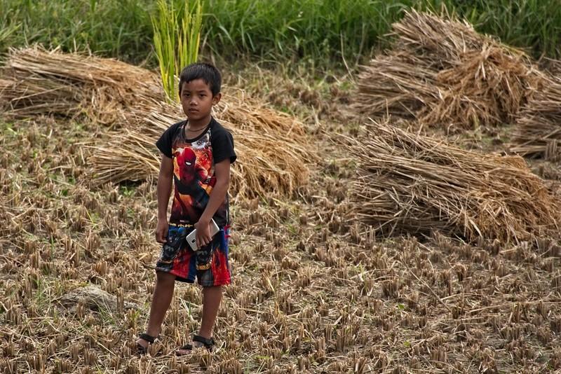 boy in the field.jpg
