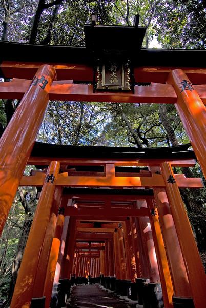 Looking up the Fushimi-inari Shrine in Kyoto, Japan