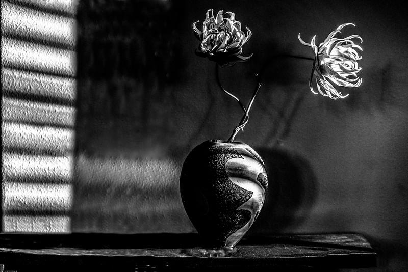 Paul Italiano_Flowers from Amy.jpg