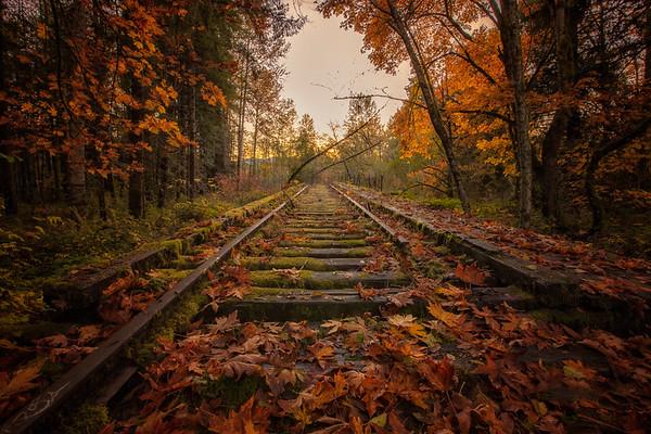 Snoqualmie Valley Autumn