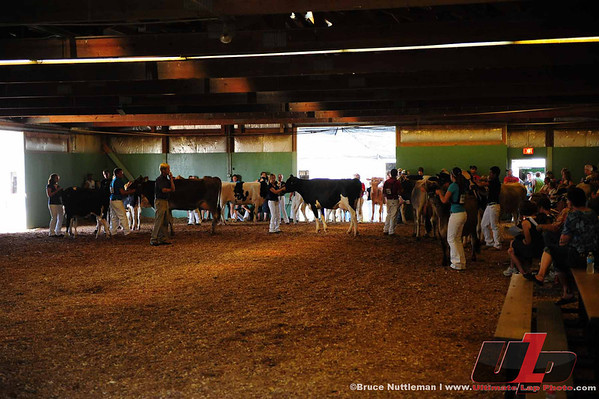 Friday, July 20th, 2012-Jr. Dairy Show