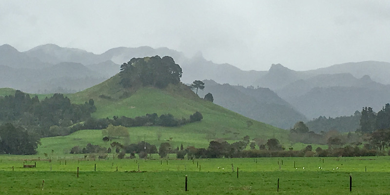 Day 7: After breakfast, rain in Tairua 6313p