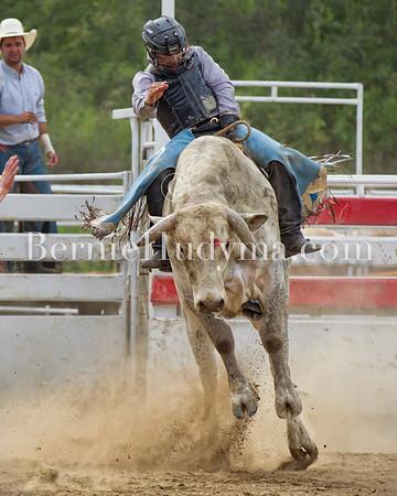 Bull Riding - wp12