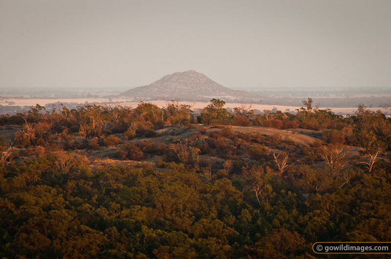 Pyramid Hill, early morning, from Mt Terrick Terrick, Terrick Terrick NP