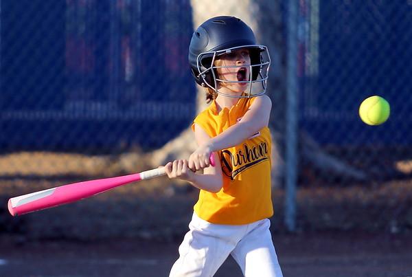 Chico Little League (Softball)
