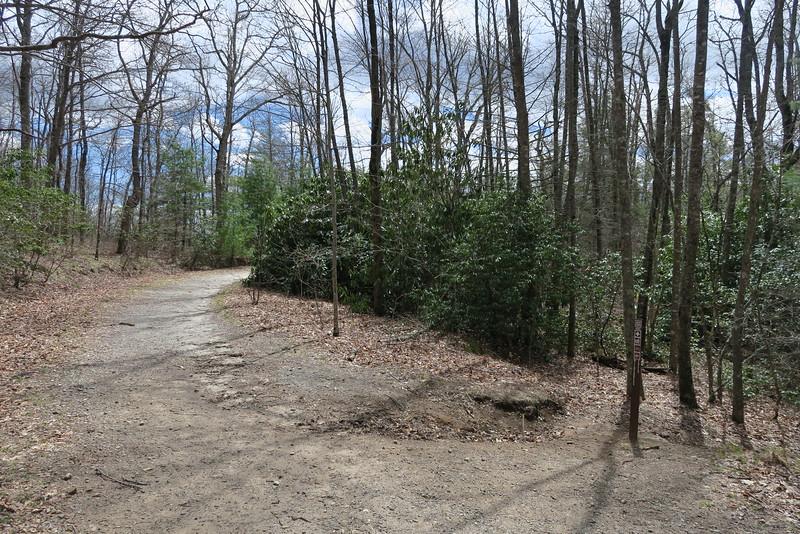 Panthertown Valley-Wilderness Falls Trail Junction - 3,960'