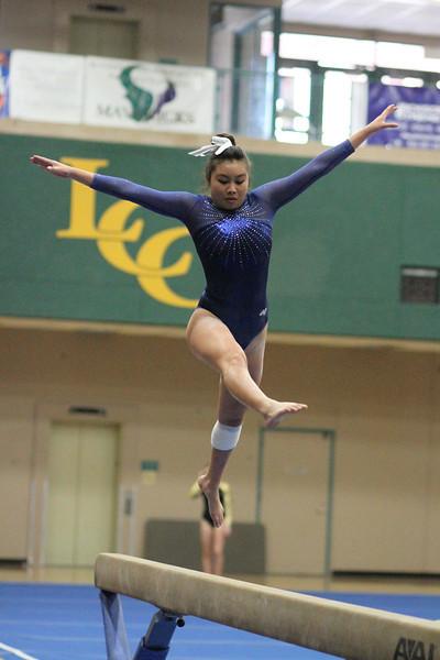 2014_03_27 Gymnastics LCC vs Westview Web 0015.JPG