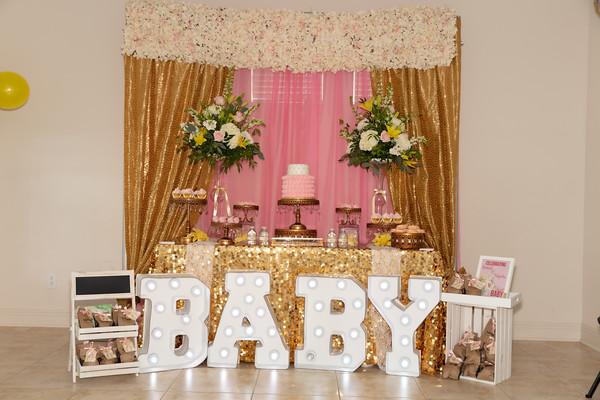 Khimani Baby Shower 2019